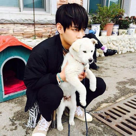 5 Korean Male Celebrities Competing In Cuteness With