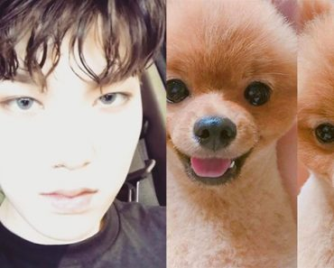 B.A.P Zelo Dog's Instagram Hacked