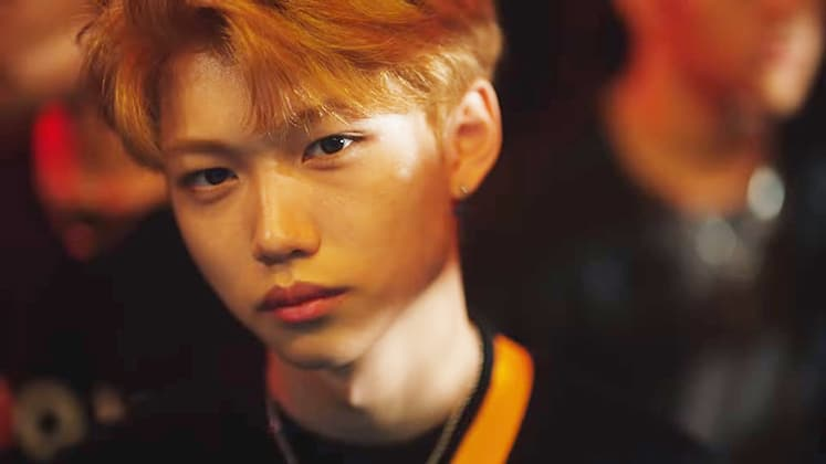 JYP Stray Kids Member Profiles